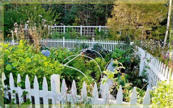 white-fence-vegetable-garden